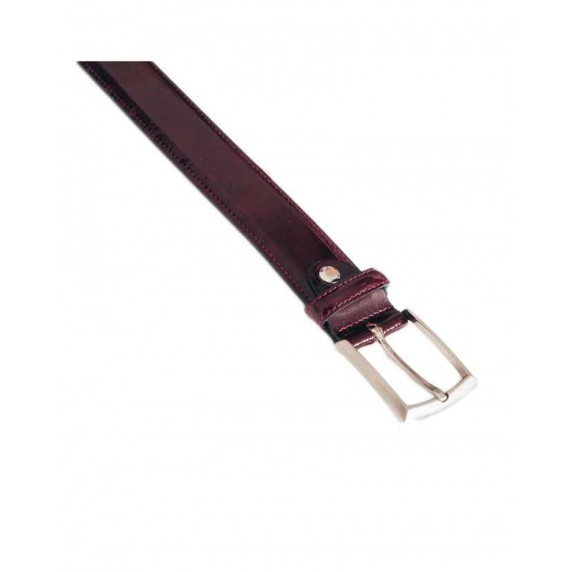 Cinturón Castellano